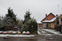 2020-11-29 Sochowa Zagroda (5)