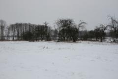 2021-01-18 Sochowa Zagroda (9)