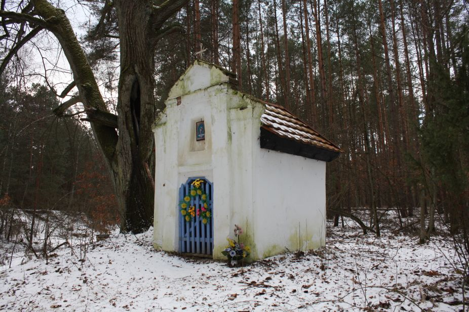 2019-01-15 Glina kapliczka nr1 (12)