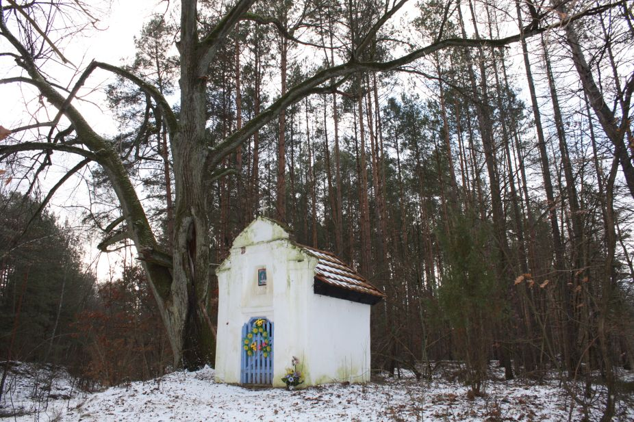 2019-01-15 Glina kapliczka nr1 (16)