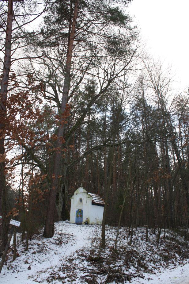 2019-01-15 Glina kapliczka nr1 (17)