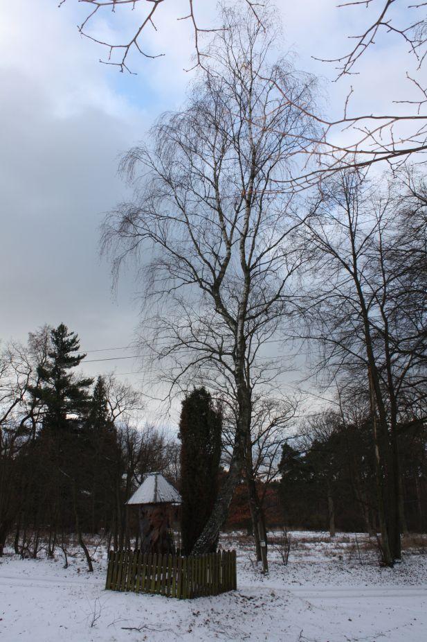 2019-01-15 Glina kapliczka nr2 (1)