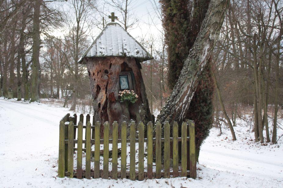 2019-01-15 Glina kapliczka nr2 (15)