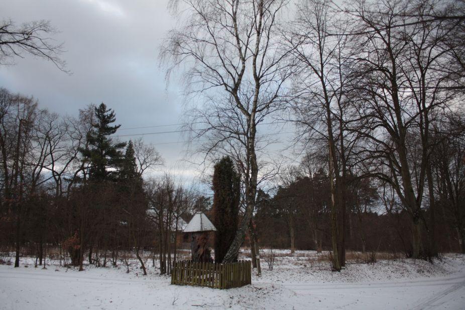 2019-01-15 Glina kapliczka nr2 (18)
