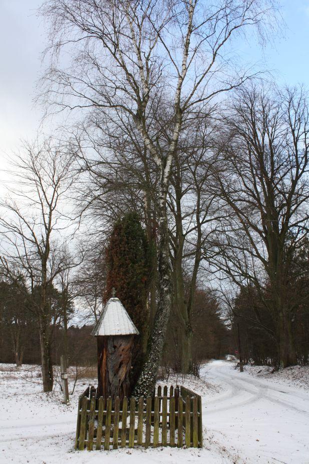 2019-01-15 Glina kapliczka nr2 (21)