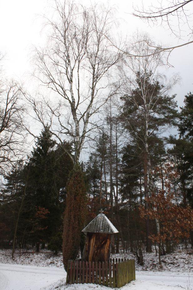 2019-01-15 Glina kapliczka nr2 (23)