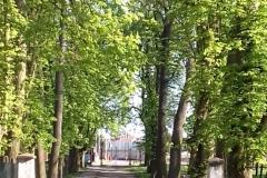 2018-04-22 Nowe Miasto - pałac (1)