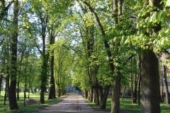 2018-04-22 Nowe Miasto - pałac (29)