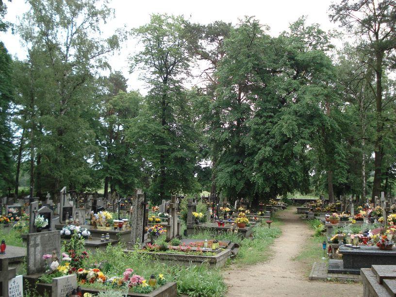 2007-06-03 Radziejwice - cmentarz parafialny (14)