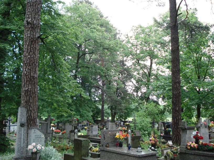 2007-06-03 Radziejwice - cmentarz parafialny (18)