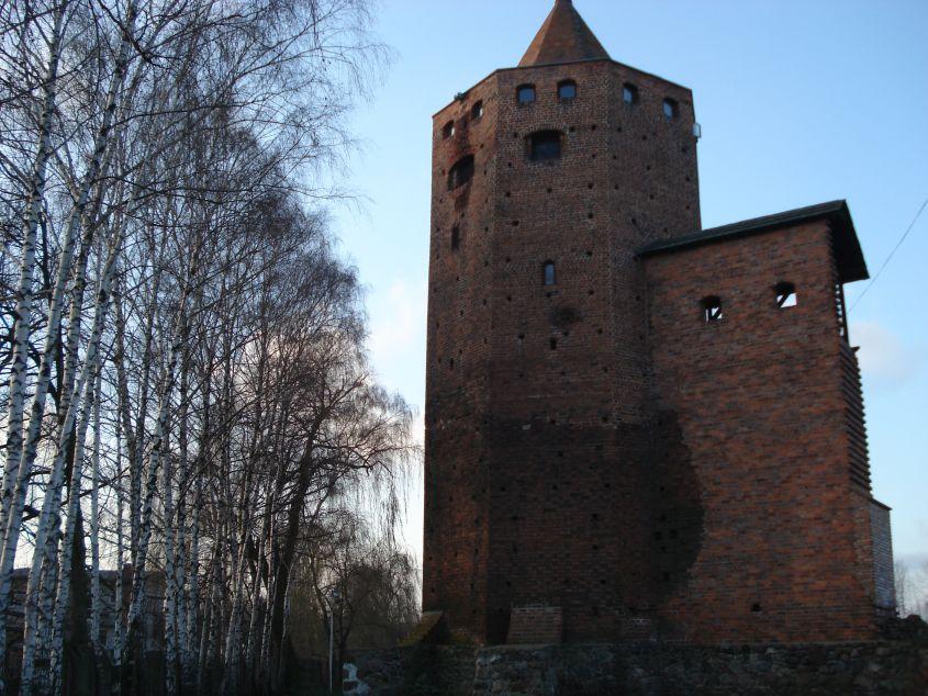 2006-12-11 Rawa Maz. - ruiny zamku (31)