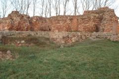 2006-12-11 Rawa Maz. - ruiny zamku (18)