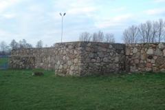 2007-03-22 Rawa Maz. - ruiny zamku (11)