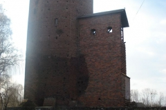 2007-03-22 Rawa Maz. - ruiny zamku (4)