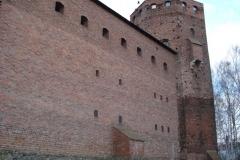 2007-03-22 Rawa Maz. - ruiny zamku (50)