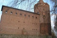 2007-03-22 Rawa Maz. - ruiny zamku (7)