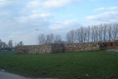2007-03-22 Rawa Maz. - ruiny zamku (9)
