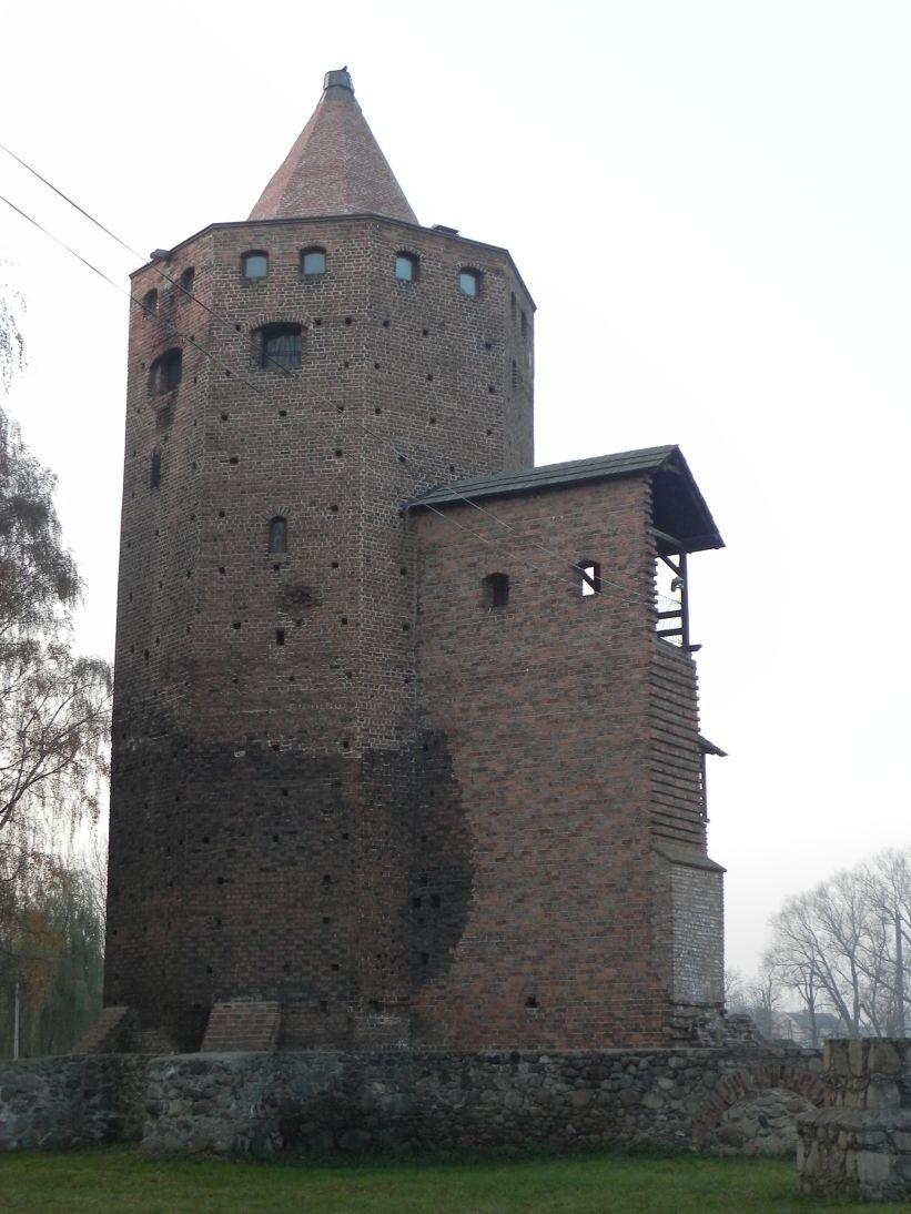 2011-11-22 Rawa Maz. - ruiny zamku (2)
