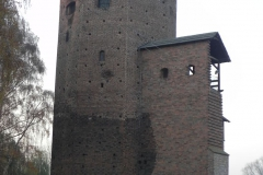 2011-11-22 Rawa Maz. - ruiny zamku (1)