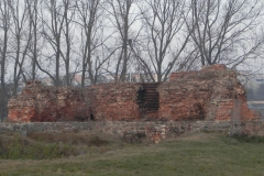 2011-11-22 Rawa Maz. - ruiny zamku (12)