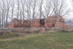 2011-11-22 Rawa Maz. - ruiny zamku (15)