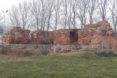 2011-11-22 Rawa Maz. - ruiny zamku (21)