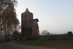 2011-11-22 Rawa Maz. - ruiny zamku (3)