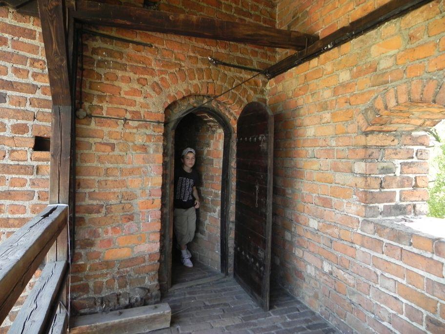 2012-05-20 Rawa Maz. - ruiny zamku (15)