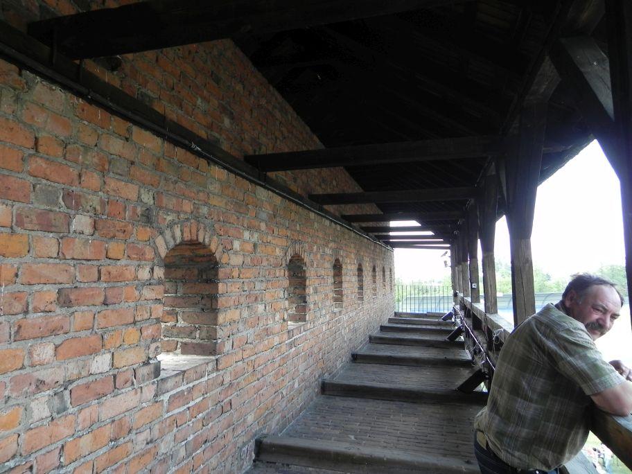 2012-05-20 Rawa Maz. - ruiny zamku (5)