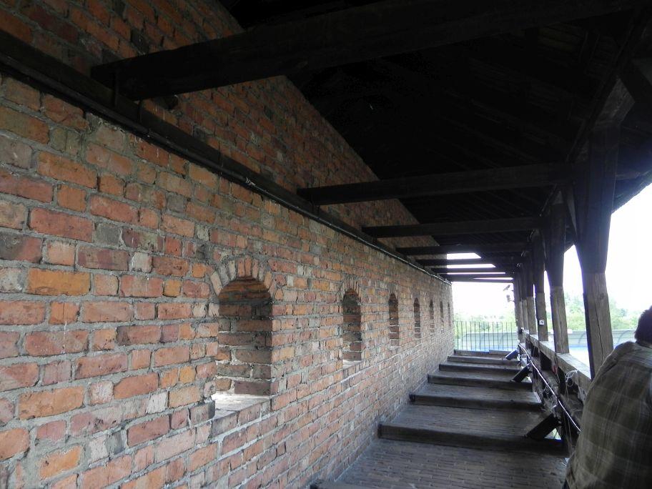 2012-05-20 Rawa Maz. - ruiny zamku (6)