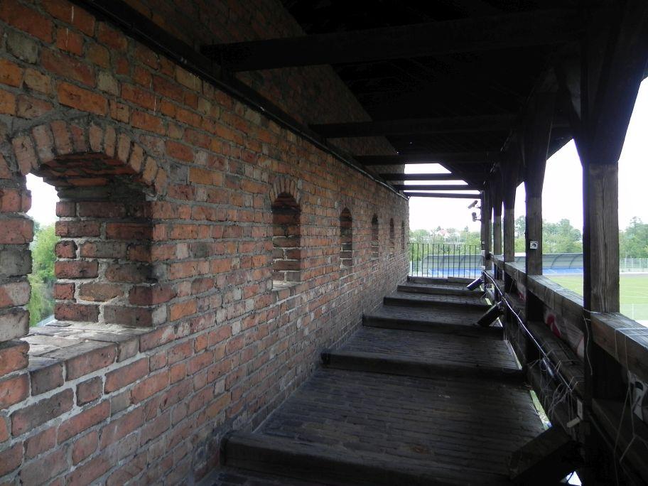 2012-05-20 Rawa Maz. - ruiny zamku (7)