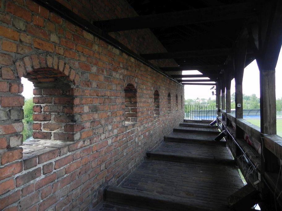 2012-05-20 Rawa Maz. - ruiny zamku (8)