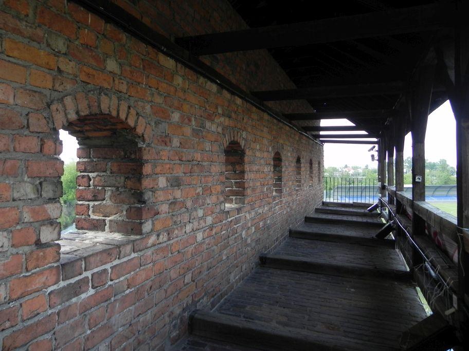 2012-05-20 Rawa Maz. - ruiny zamku (9)