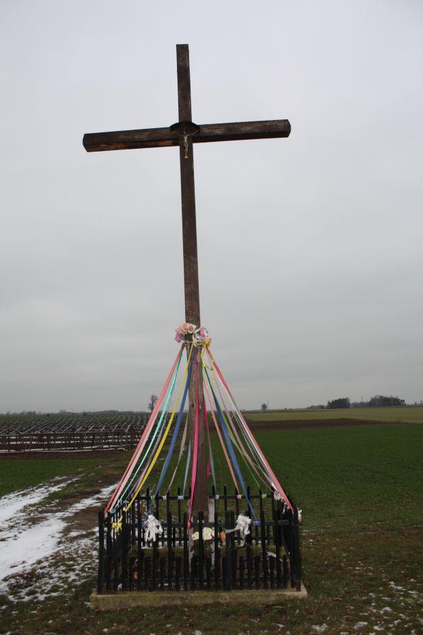 2019-01-29 Gustawów krzyż nr1 (20)