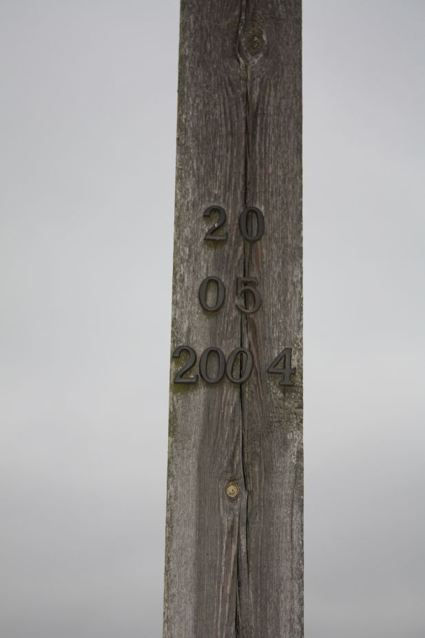 2019-01-29 Gustawów krzyż nr2 (10)