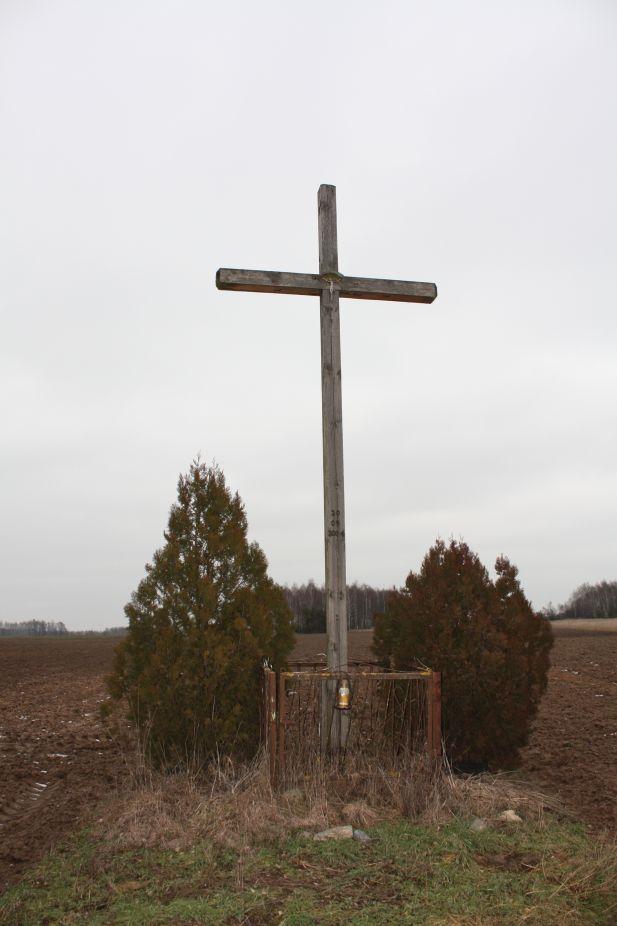 2019-01-29 Gustawów krzyż nr2 (13)