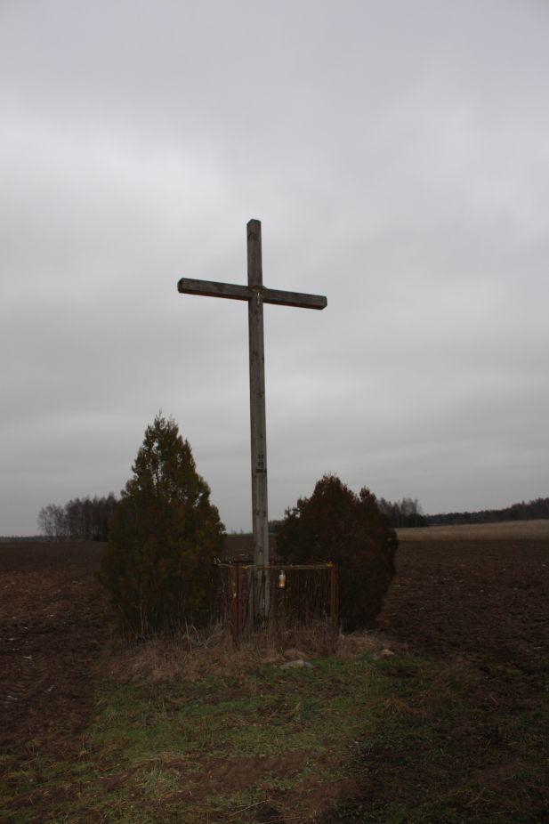 2019-01-29 Gustawów krzyż nr2 (2)