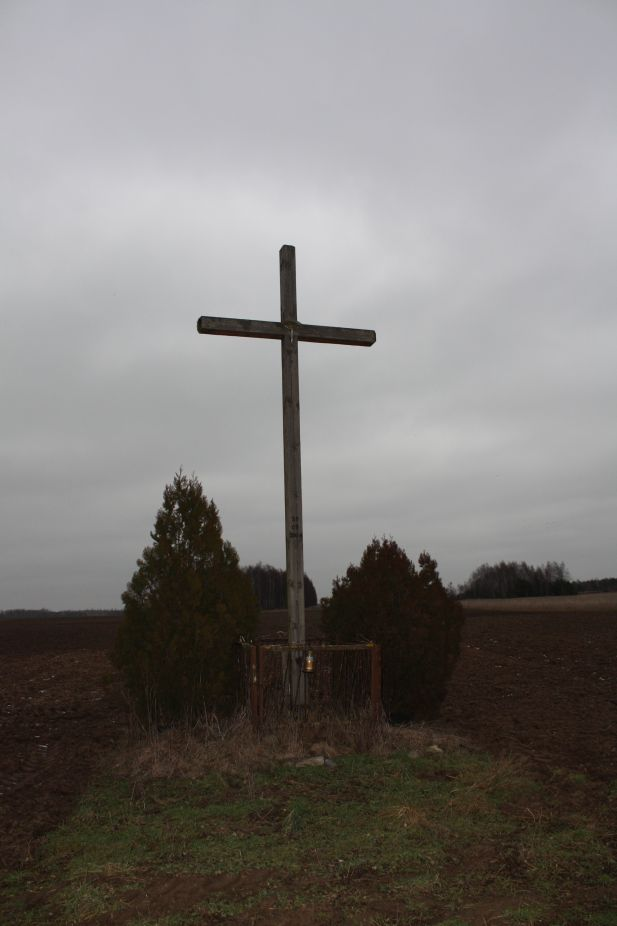 2019-01-29 Gustawów krzyż nr2 (3)