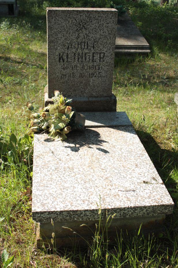 2018-05-13 Stanisławów Lipski - cmentarz ewangelicki (16)