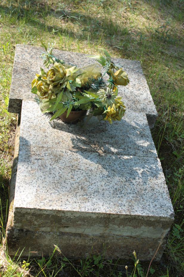 2018-05-13 Stanisławów Lipski - cmentarz ewangelicki (18)