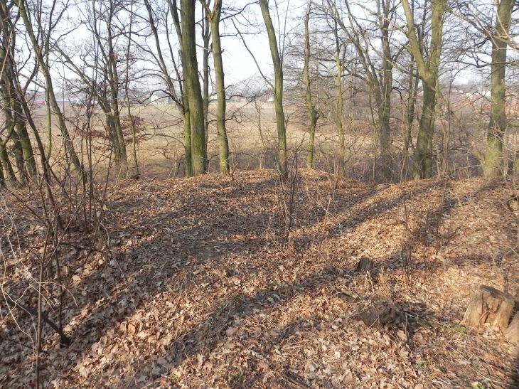 2012-03-18 Stara Rawa - grodzisko (11)