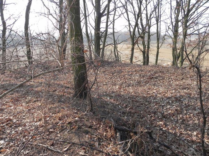 2012-03-18 Stara Rawa - grodzisko (12)