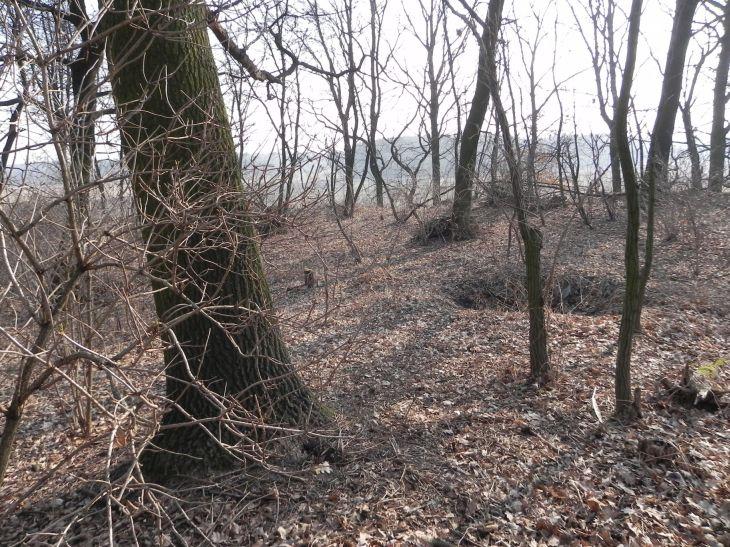 2012-03-18 Stara Rawa - grodzisko (14)