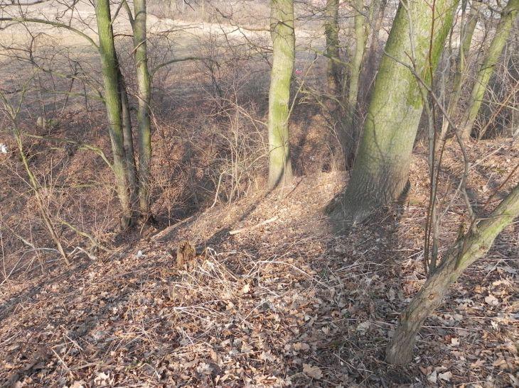 2012-03-18 Stara Rawa - grodzisko (16)