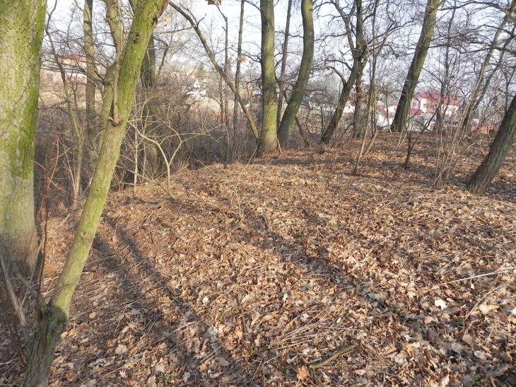 2012-03-18 Stara Rawa - grodzisko (18)