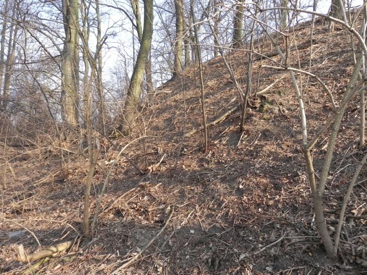 2012-03-18 Stara Rawa - grodzisko (19)