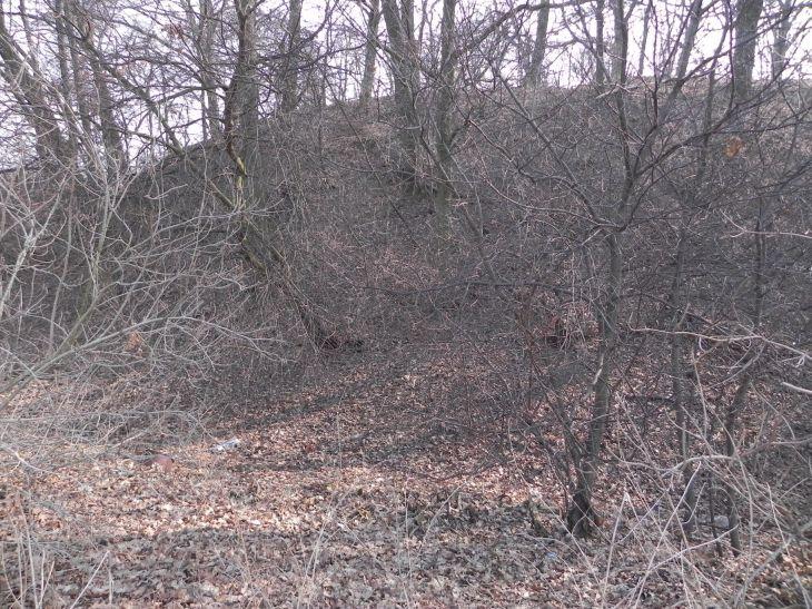 2012-03-18 Stara Rawa - grodzisko (2)
