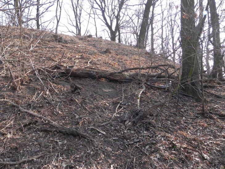 2012-03-18 Stara Rawa - grodzisko (23)