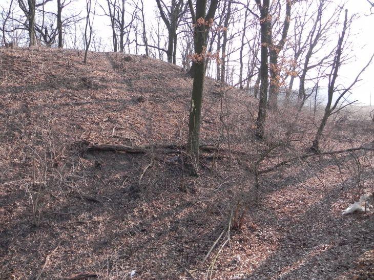 2012-03-18 Stara Rawa - grodzisko (25)