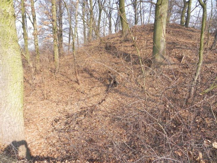2012-03-18 Stara Rawa - grodzisko (9)